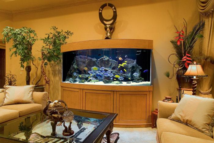 Home aquarium the best size and location home and for Aquarium interior decoration
