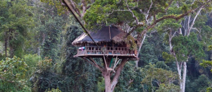 The most amazing tree houses of the world The most amazing tree houses of the world 676c9d6fa9593edb4575d7892873716a  Home 676c9d6fa9593edb4575d7892873716a
