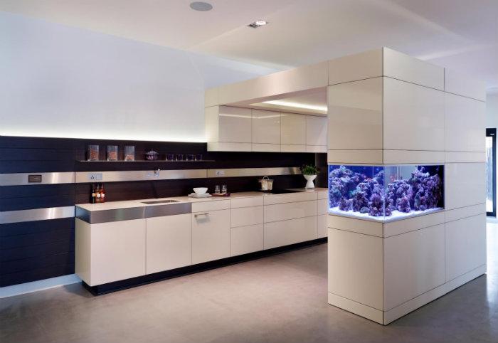 aquarium-in-kitchen-home-decoration Home aquarium: the best size and location Home aquarium: the best size and location aquarium in kitchen home decoration