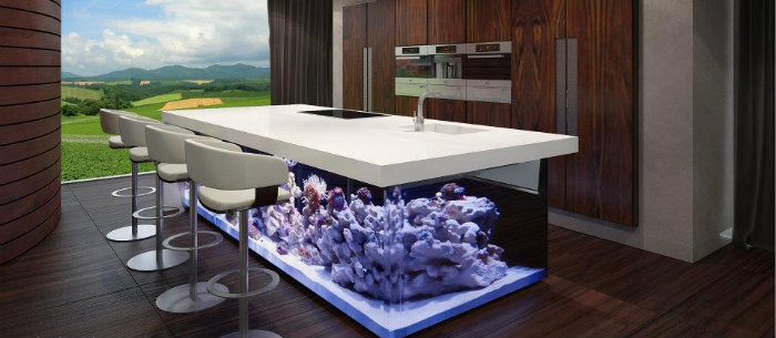 Home aquarium: the best size and location Home aquarium: the best size and location kitchen aquarium island home decoration  Home kitchen aquarium island home decoration