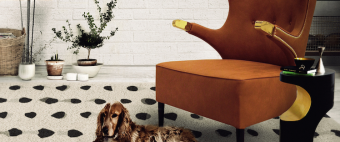 Trendy Rugs for your Living Room