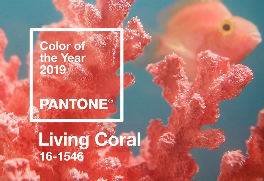 Be Inspired By The Ultimate 2019 Color Trends! 2019 color trends Be Inspired By The Ultimate 2019 Color Trends! Be Inspired By The Ultimate 2019 Color Trends 8